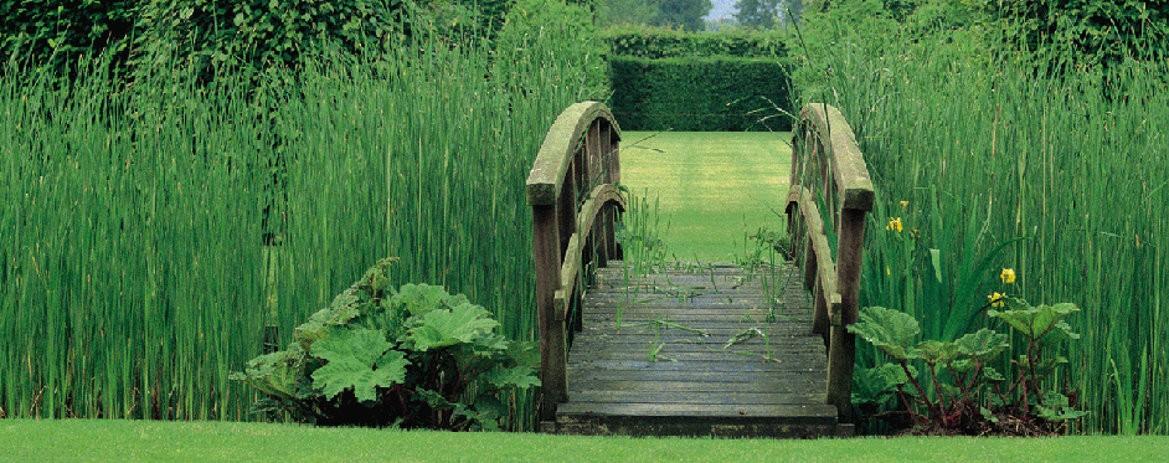 Vstupte s námi do zahrady